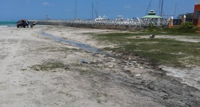 Boca Chica se convierte en playa de aguas muertas por la contaminación