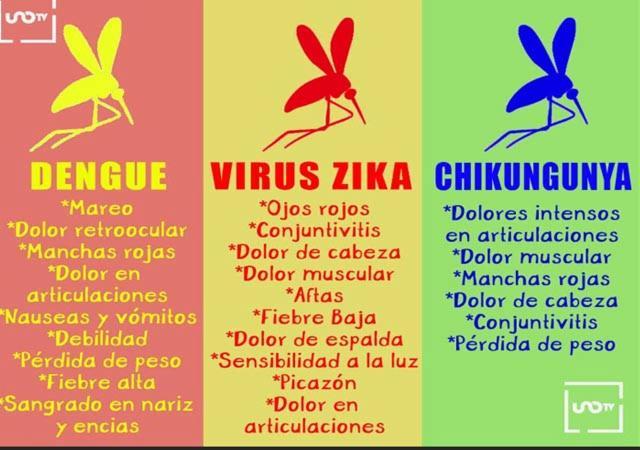 Más de 750 mil personas mueren cada año por culpa de los mosquitos