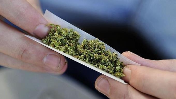 Estado de Illinois en EE.UU. legaliza el consumo recreativo de marihuana